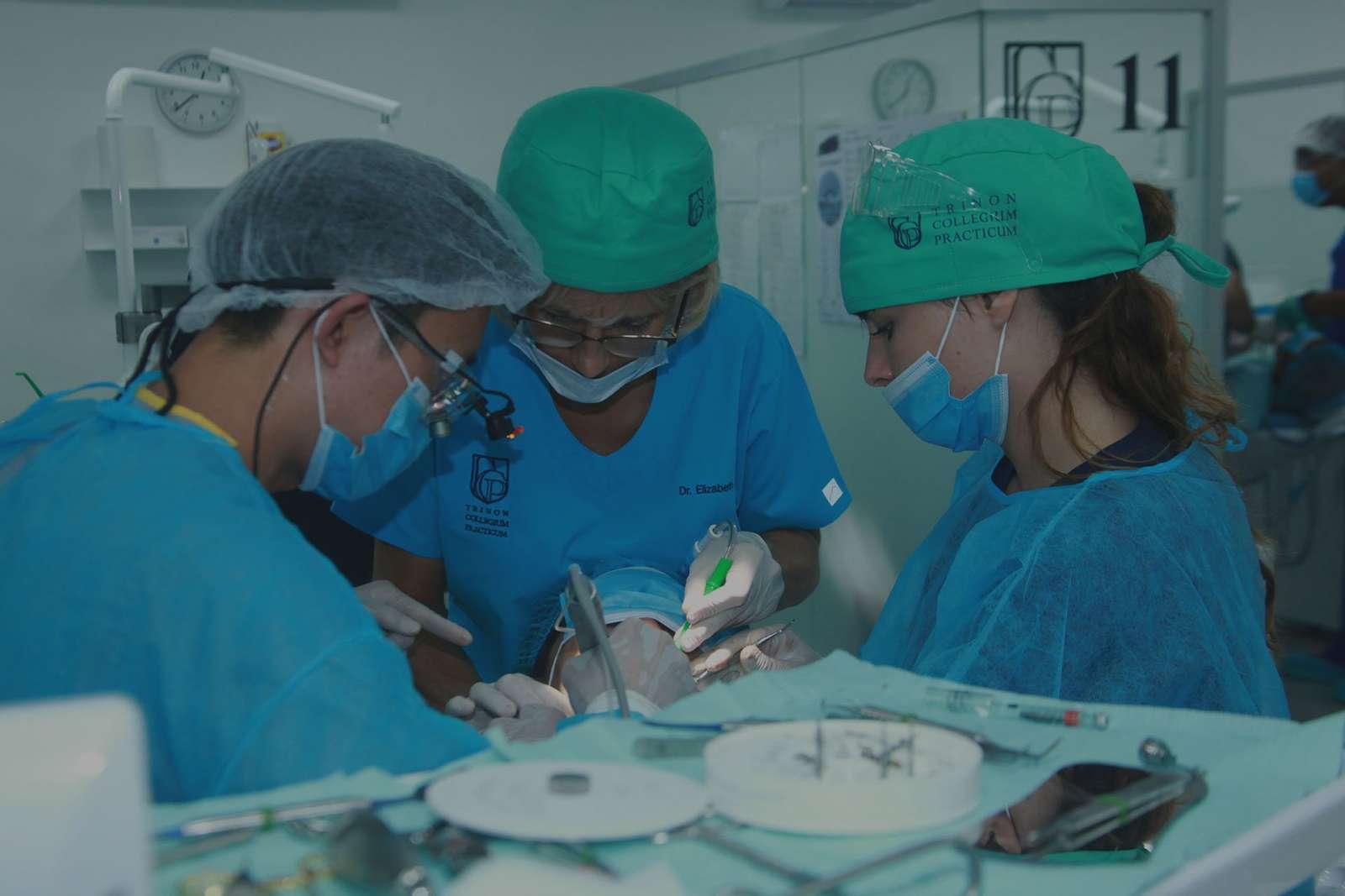 Trinon Collegium Practicum dental implant courses